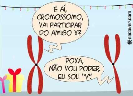 cromossomo-x-e-y