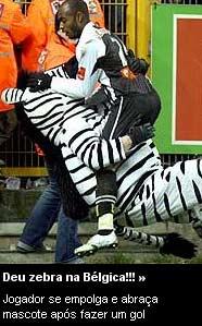 deu-zebra.jpg