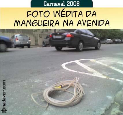 mangueira-na-avenida1.jpg